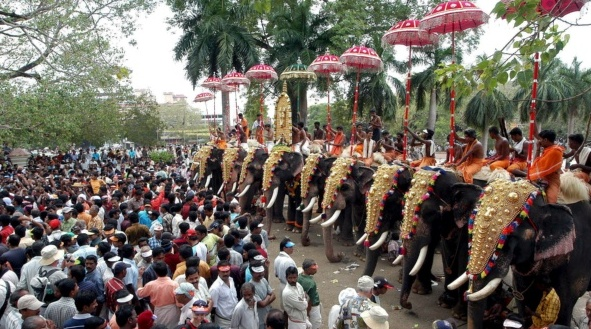 Thrissur Pooram 2016 Elephant Festival Photos, Images, Pictures, Gallery, Wallpapers